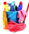 Blue bucket, pink mop and multiple bottles of cleaning products